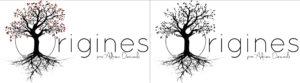 Logo 4 saisons 2